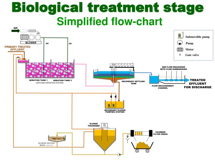 Biological treatment stage