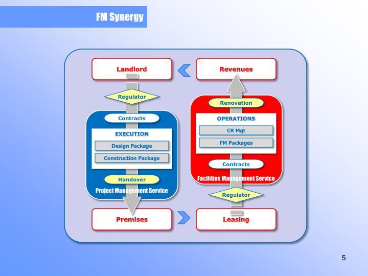 FM Synergy