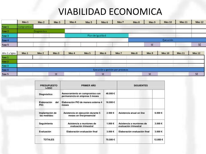 VIABILIDAD ECONOMICA