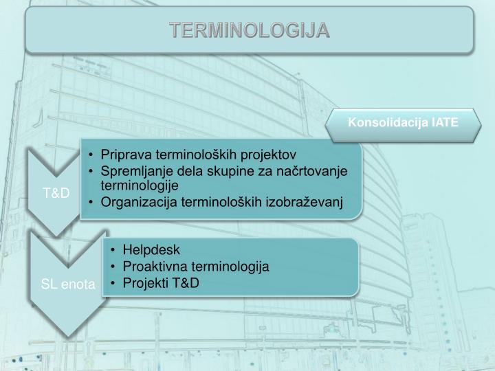 terminologija