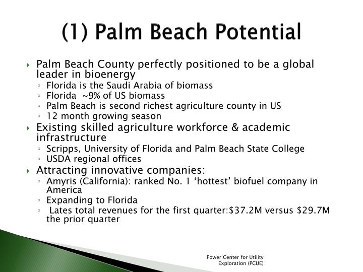 (1) Palm Beach Potential
