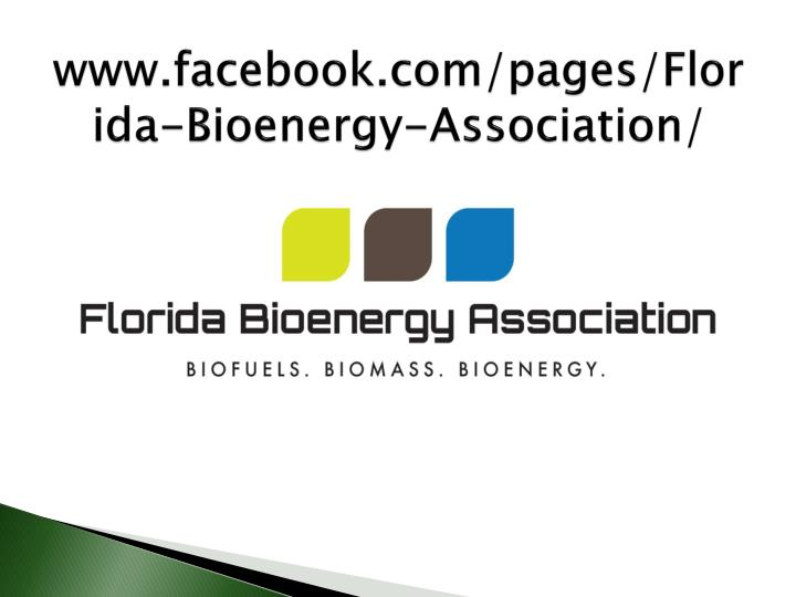 www.facebook.com/pages/Florida-Bioenergy-Association