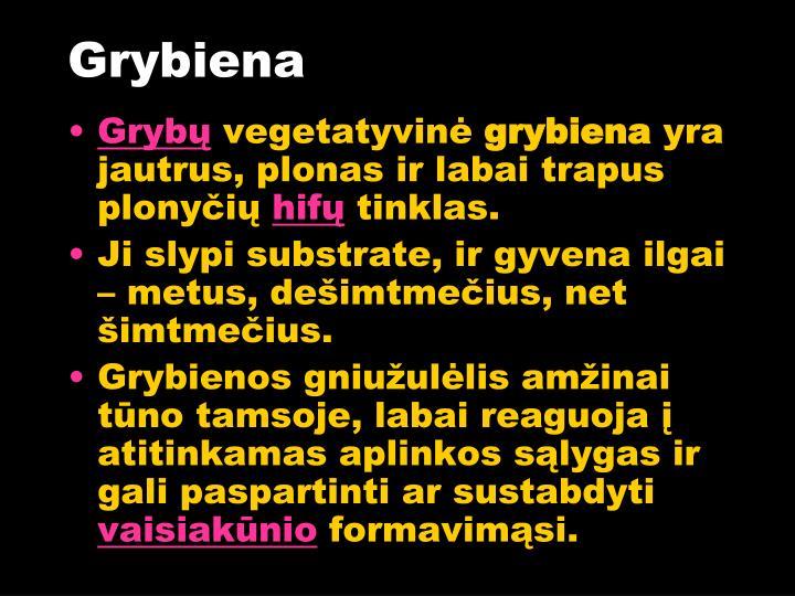 Grybiena