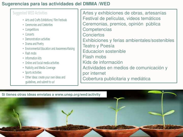 Sugerencias para las actividades del DMMA /WED