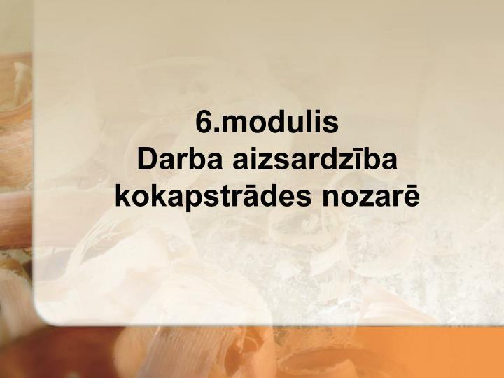 6.modulis