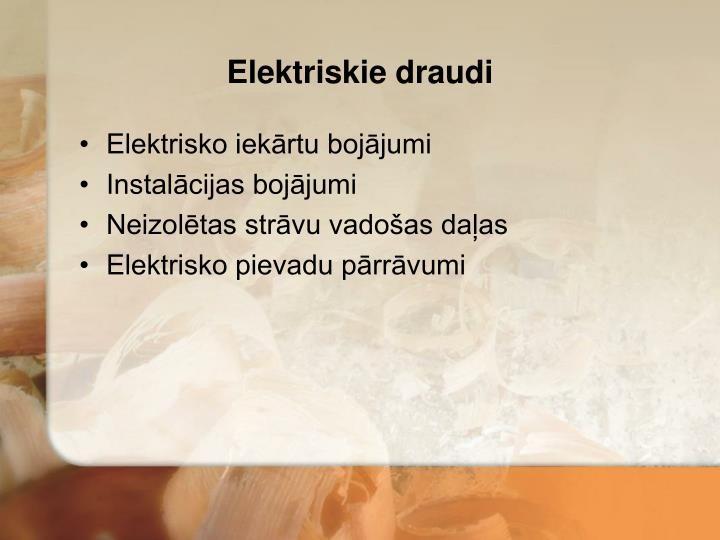 Elektriskie draudi