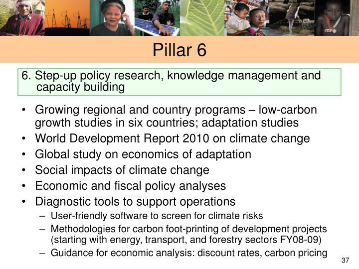 Pillar 6
