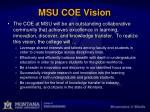 msu coe vision