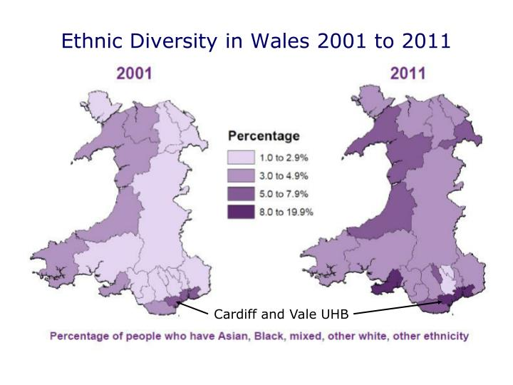 Ethnic Diversity in Wales 2001 to 2011