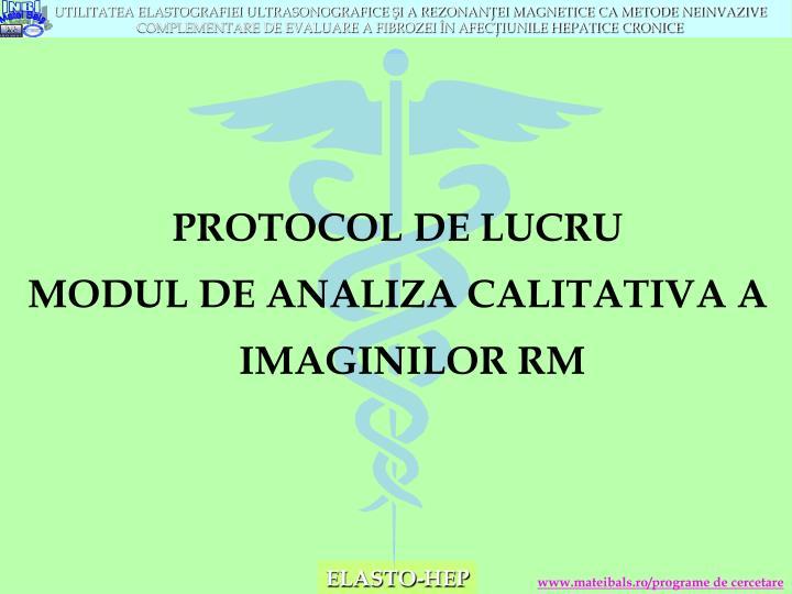 PROTOCOL DE LUCRU