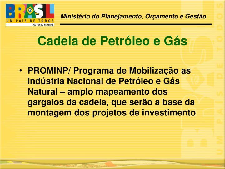 PROMINP/ Programa de Mobilização as Indústria Nacional de Petróleo e Gás Natural – amplo mapeamento dos gargalos da cadeia, que serão a base da montagem dos projetos de investimento