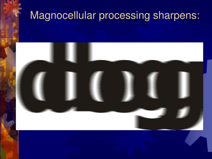 Magnocellular processing sharpens: