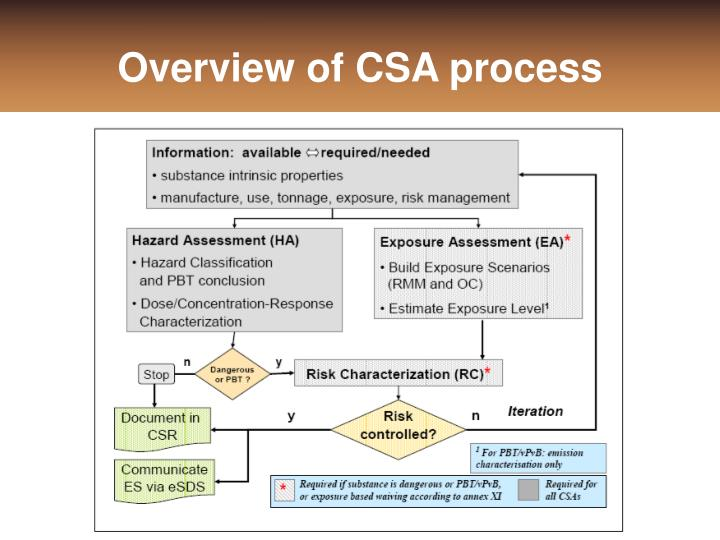 Overview of CSA process