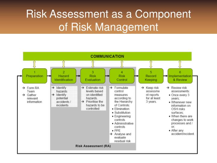 Risk Assessment as a Component