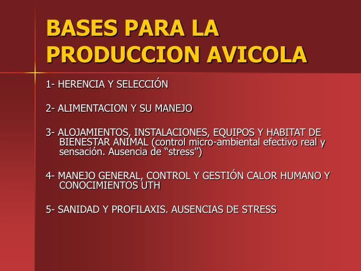 BASES PARA LA PRODUCCION AVICOLA