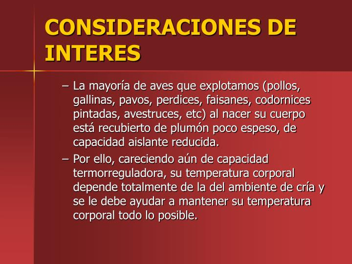 CONSIDERACIONES DE INTERES