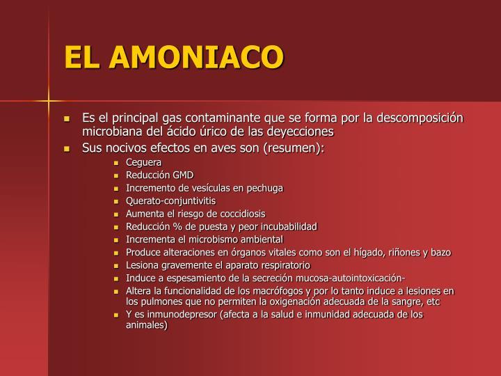 EL AMONIACO