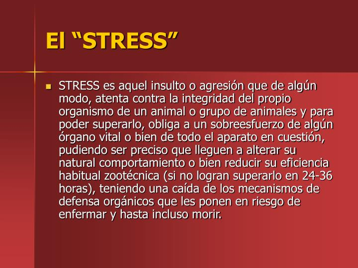 El STRESS