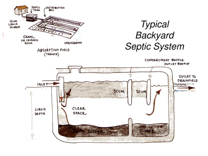 Typical Backyard Septic System
