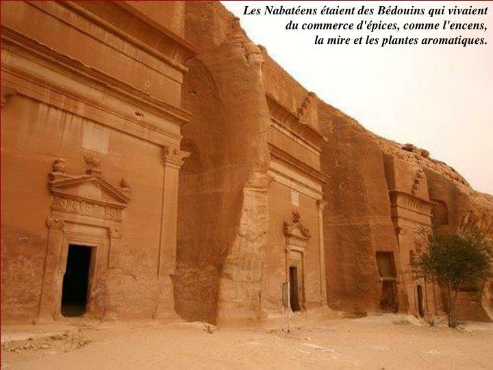 Les Nabatéens étaient des Bédouins qui vivaient du commerce d'épices, comme l'encens,
