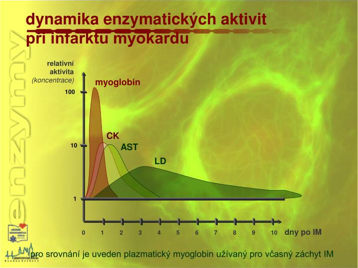 dynamika enzymatických aktivit