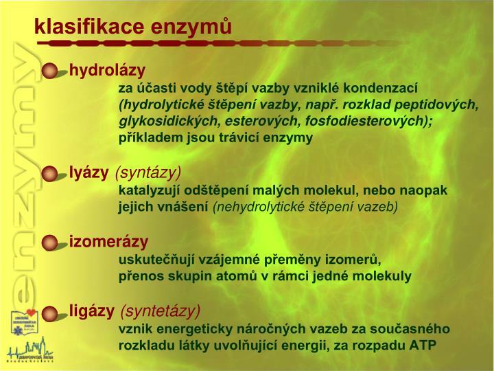 klasifikace enzymů