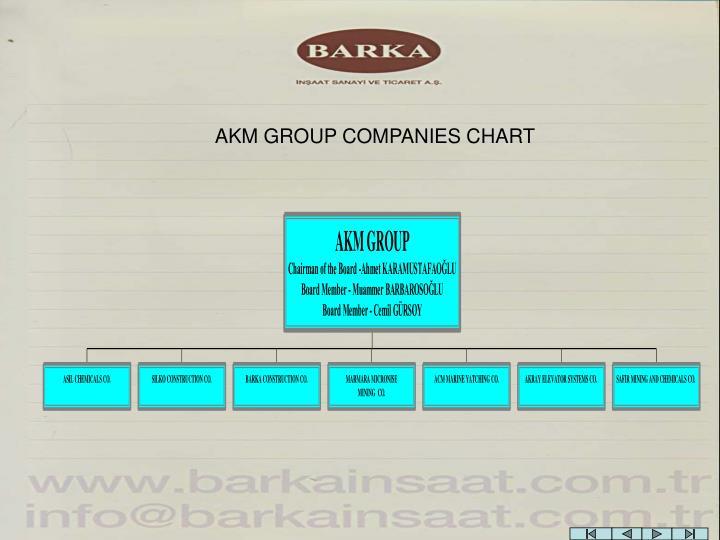 AKM GROUP COMPANIES CHART