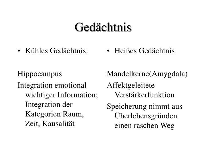 Kühles Gedächtnis: