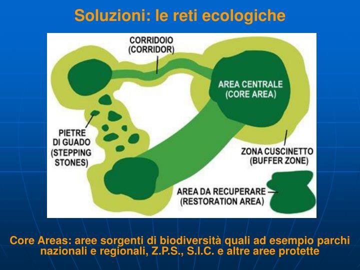 Soluzioni: le reti ecologiche