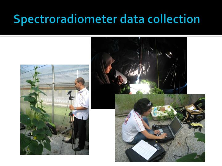 Spectroradiometer data collection