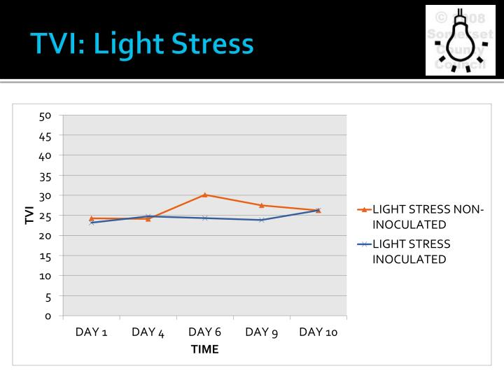 TVI: Light Stress