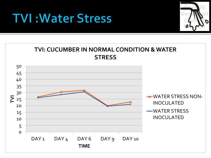 TVI :Water Stress