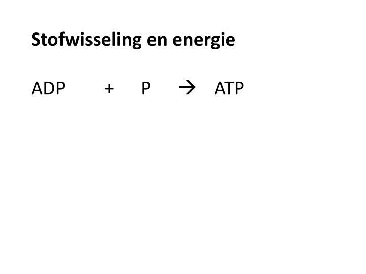 Stofwisseling en energie