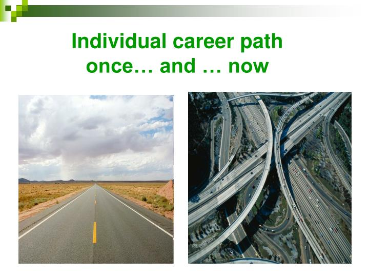 Individual career path