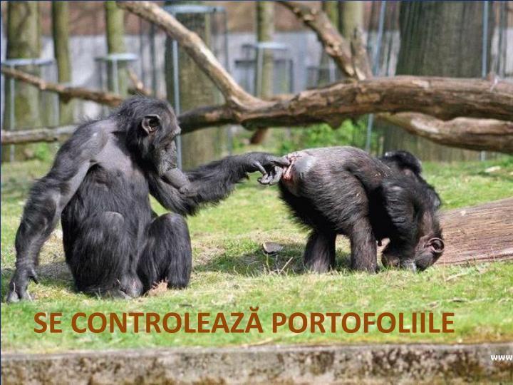 SE CONTROLEAZ