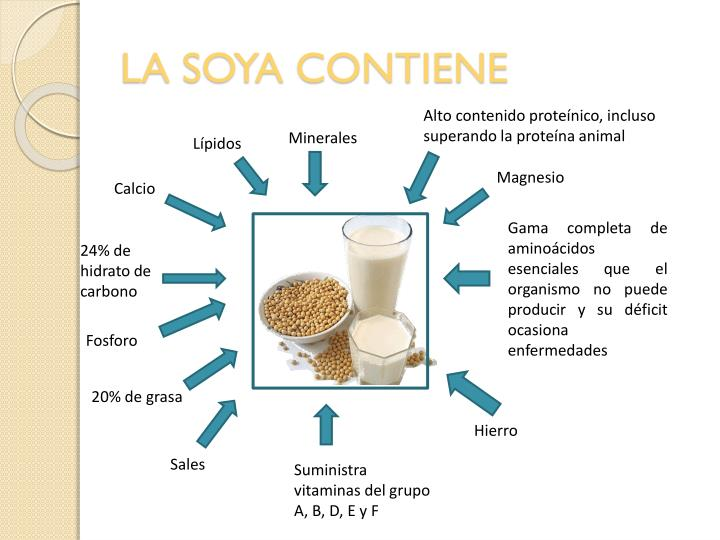 LA SOYA CONTIENE