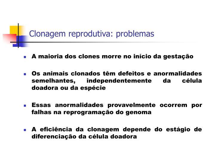 Clonagem reprodutiva: problemas