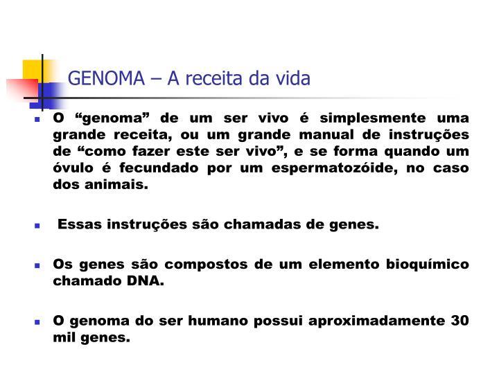 GENOMA – A receita da vida