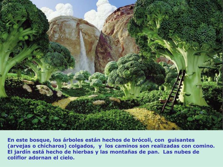 En este bosque, los rboles estn hechos de brcoli, con  guisantes (arvejas o chcharos) colgados,  y  los caminos son realizadas con comino.  El jardn est hecho de hierbas y las montaas de pan.  Las nubes de coliflor adornan el cielo.