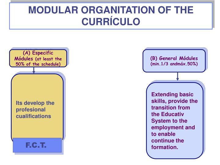 MODULAR ORGANITATION OF THE CURRÍCULO