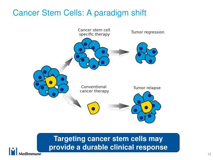 Cancer Stem Cells: A paradigm shift