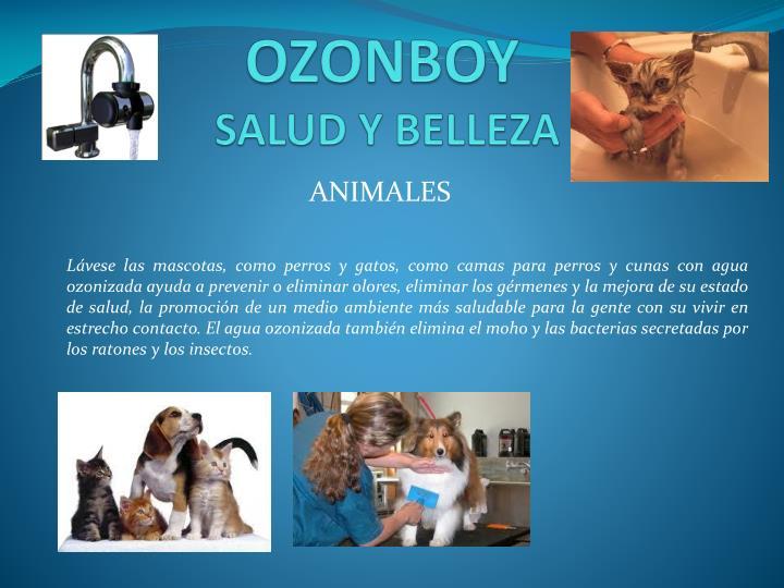OZONBOY
