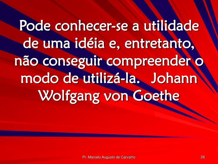 Pode conhecer-se a utilidade de uma idéia e, entretanto, não conseguir compreender o modo de utilizá-la.Johann Wolfgang von Goethe