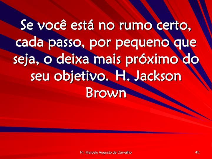 Se você está no rumo certo, cada passo, por pequeno que seja, o deixa mais próximo do seu objetivo.H. Jackson Brown