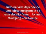 tudo na vida depende de uma id ia inteligente e de uma decis o firme johann wolfgang von goethe