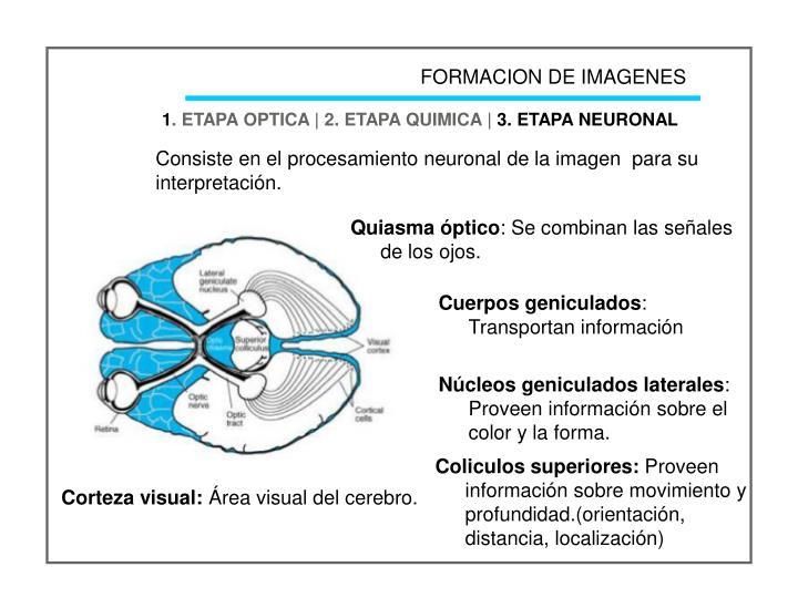 FORMACION DE IMAGENES