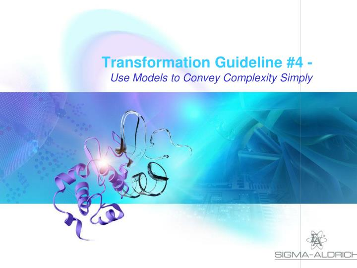 Transformation Guideline #4 -