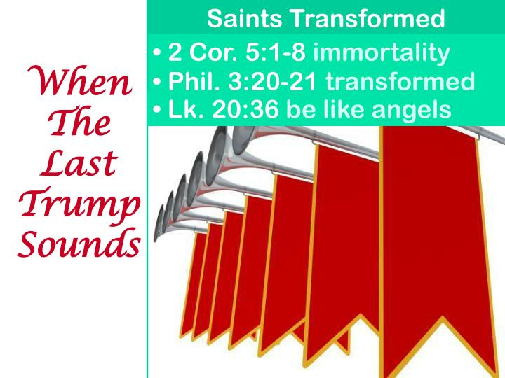 Saints Transformed