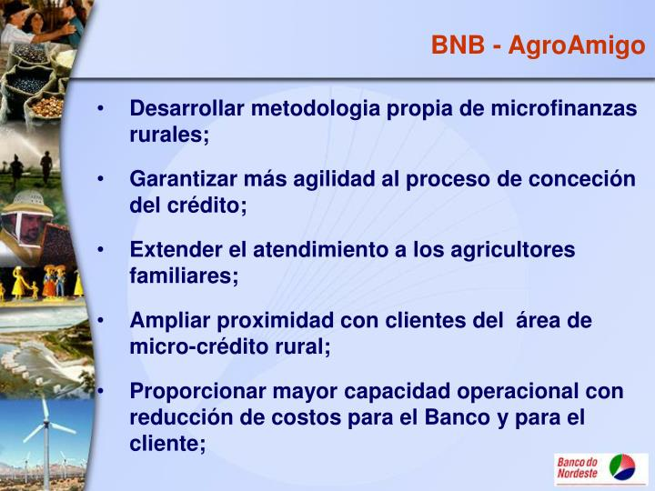 BNB - AgroAmigo