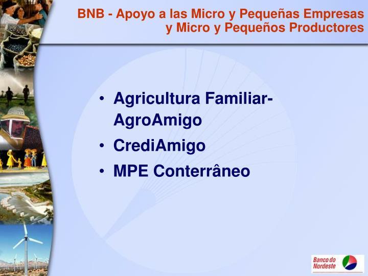 BNB - Apoyo a las Micro y Pequeñas Empresas